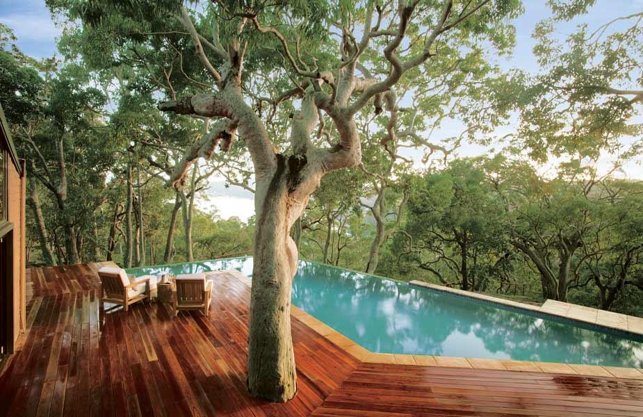 vivir entre árboles y el mar de sídney -australia