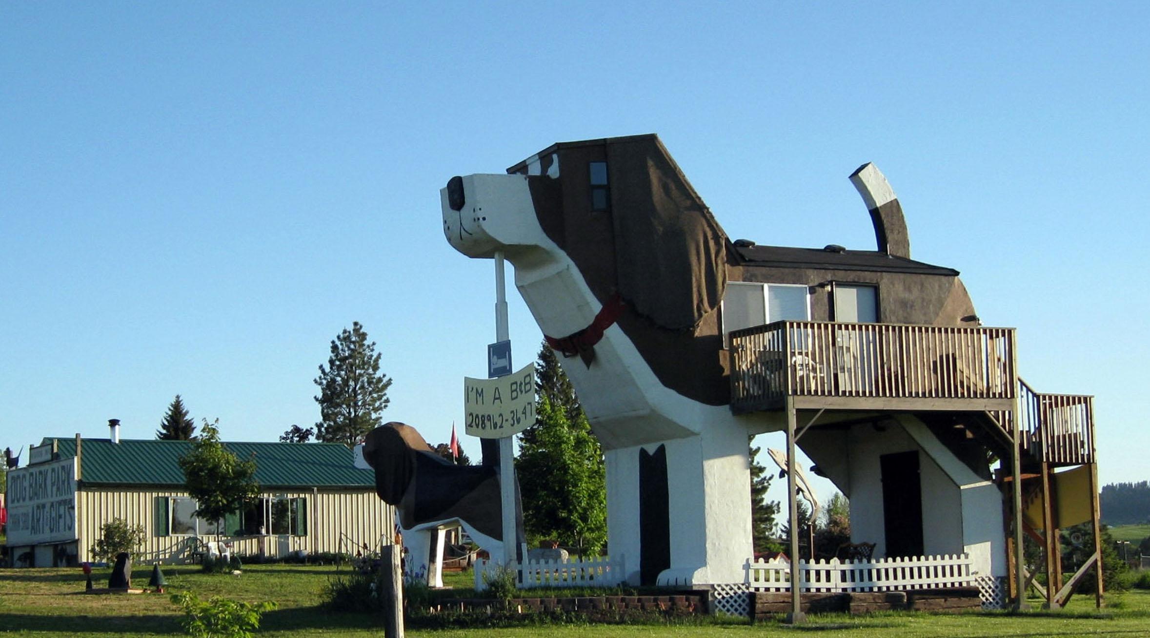 """el """"hotel perro"""", un paraíso para mascostas y dueños"""