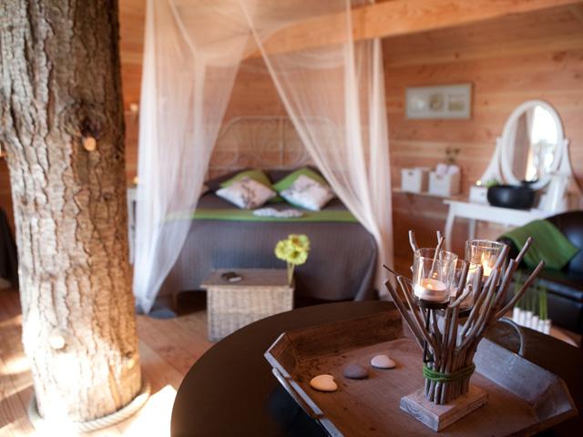 hoteles con encanto cabaas colgadas en los rboles para disfrutar a vista de pjaro
