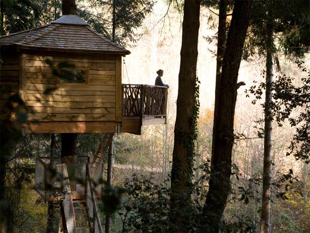 hotel canabes als arbres