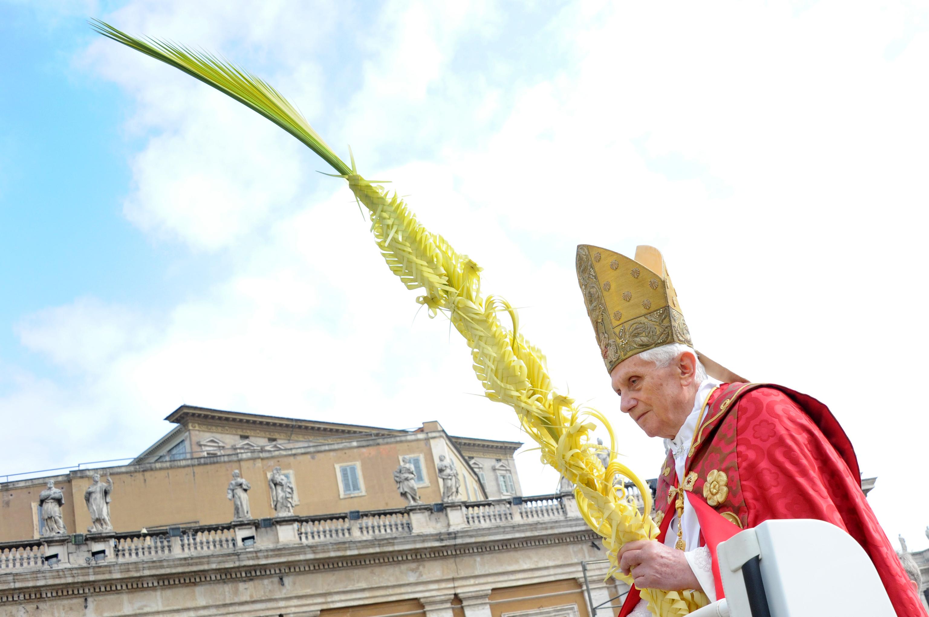el papa en el vaticano