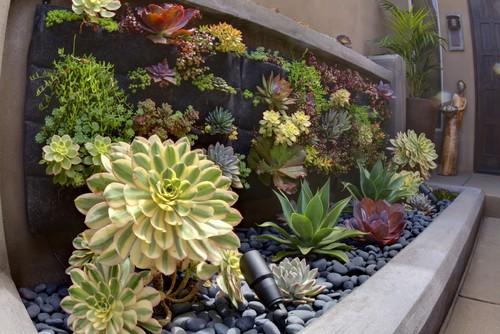 Ideas de decoraci n jardines verticales caseros fotos for Adornos para jardin caseros