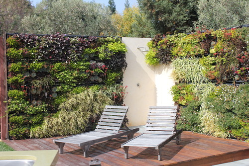 Ideas de decoraci n jardines verticales caseros fotos for Jardines verticales caseros