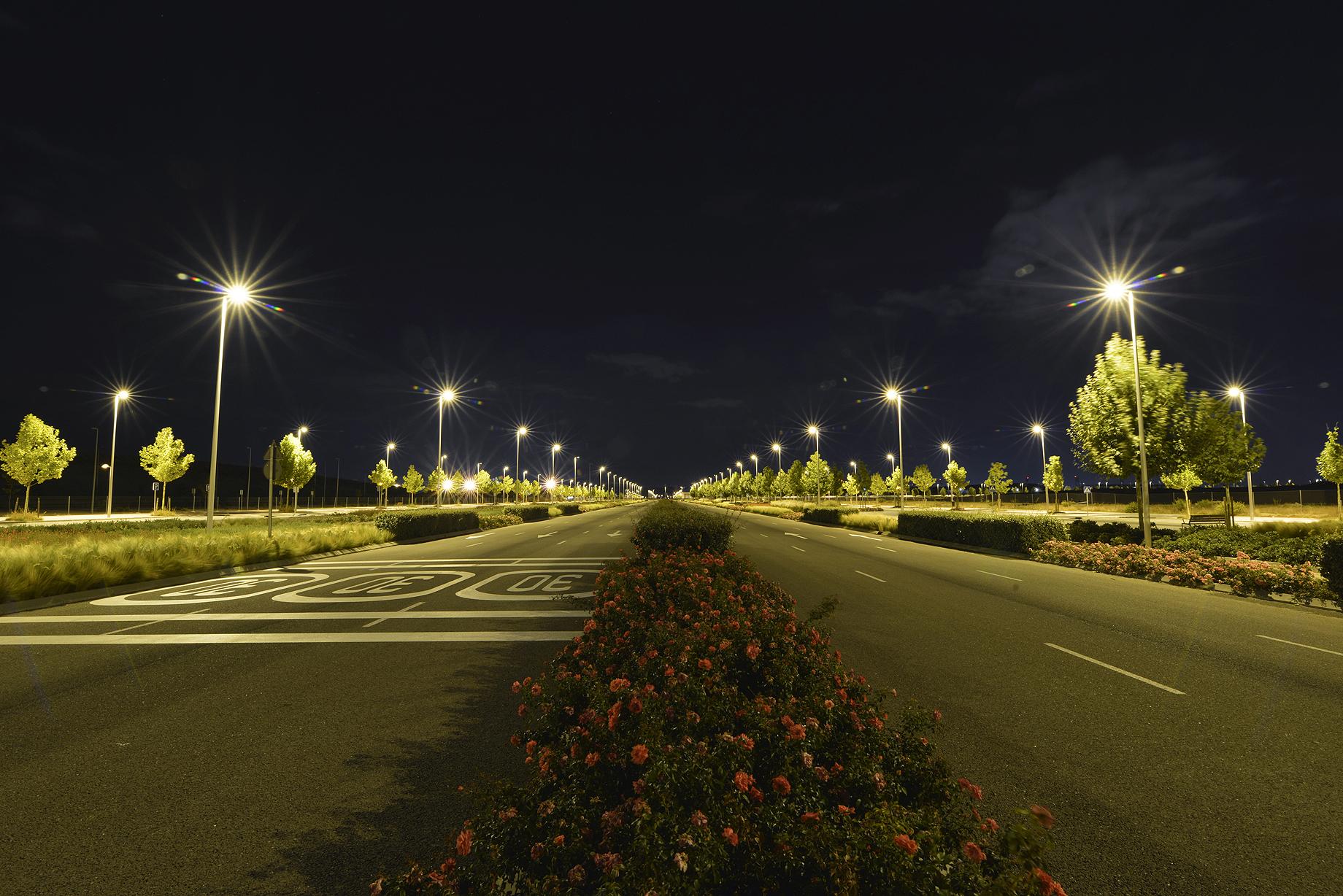 Agua regenerada, asfalto fonoabsorbente y 300.000 árboles: así se construye un barrio sostenible