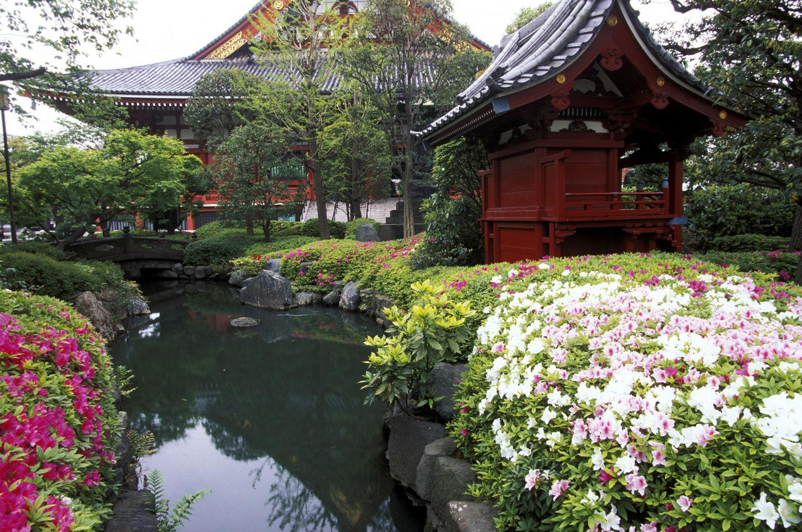 Abusos y tatamis: la odisea de un extranjero para alquilar piso en Japón