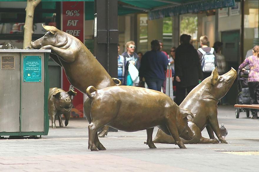 Cerdos (Adelaida, Australia)