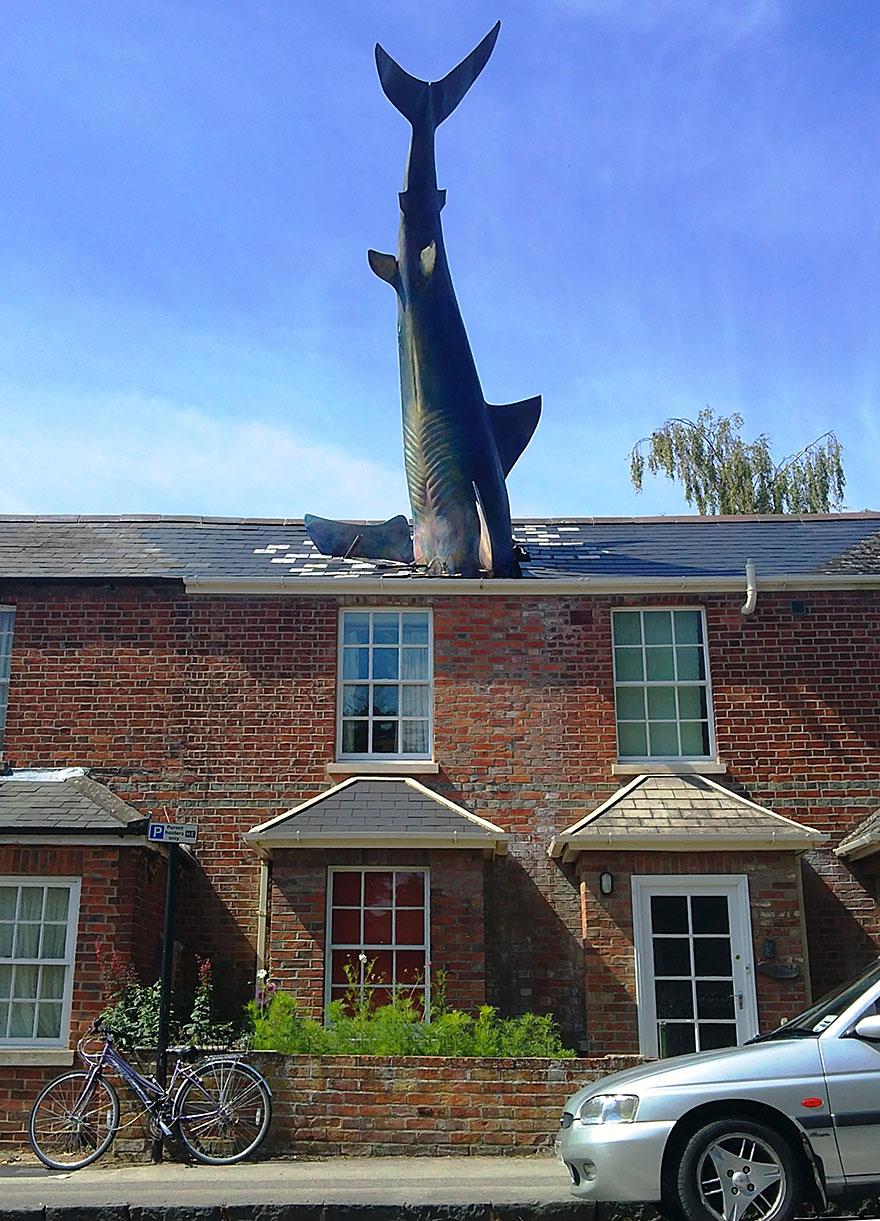 Tiburón (Oxford, Reino Unido)