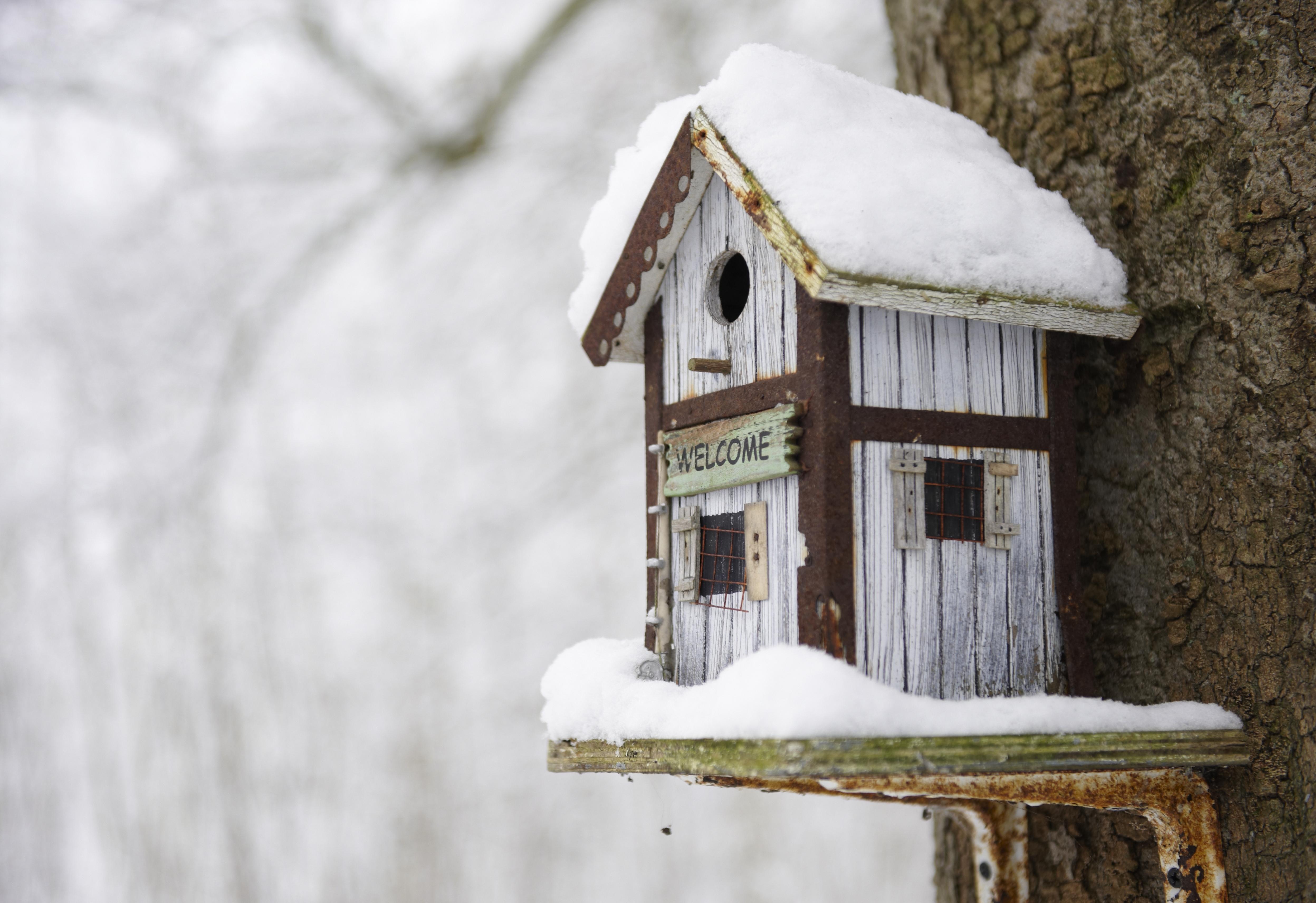 Como calentar un piso sin calefaccion trendy cmo calentar la casa con chimeneas de bioetanol - Como calentar la casa ...