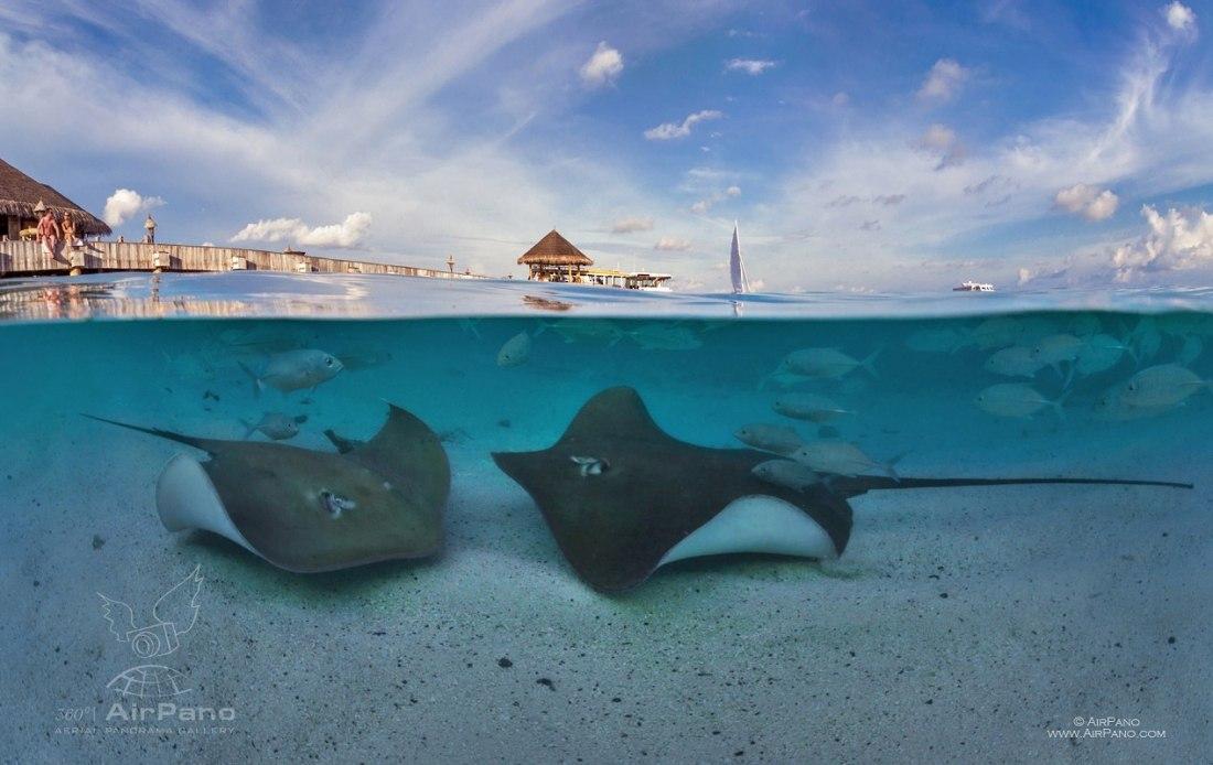 Islas Maldivas. Autor: AirPano