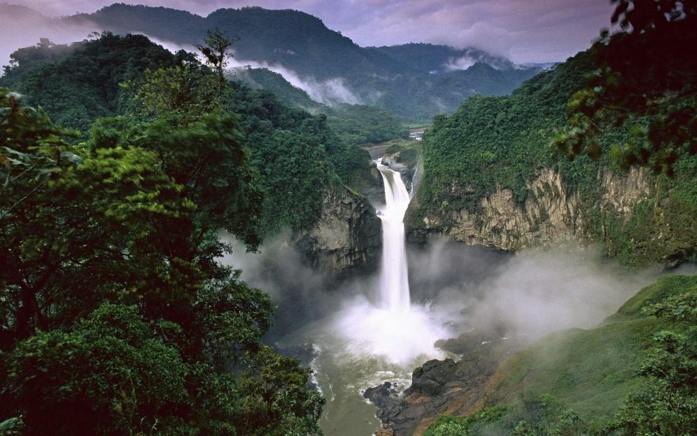 Bosque lluvioso de Amazonia
