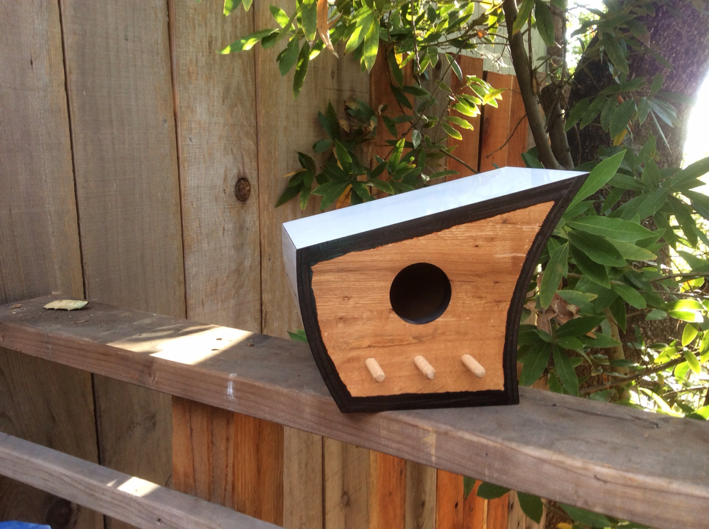 11aedf1372390 9 nidos para pájaros que  molan  más que tu propia casa — idealista news