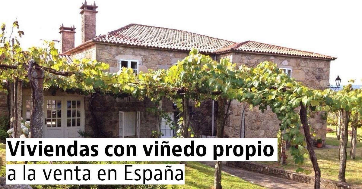 Casas con viñedo en venta