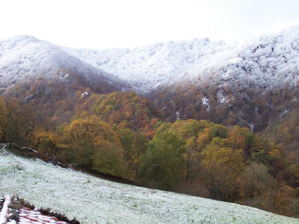 Nieve en otoño en el bosque de Bértiz Navarra