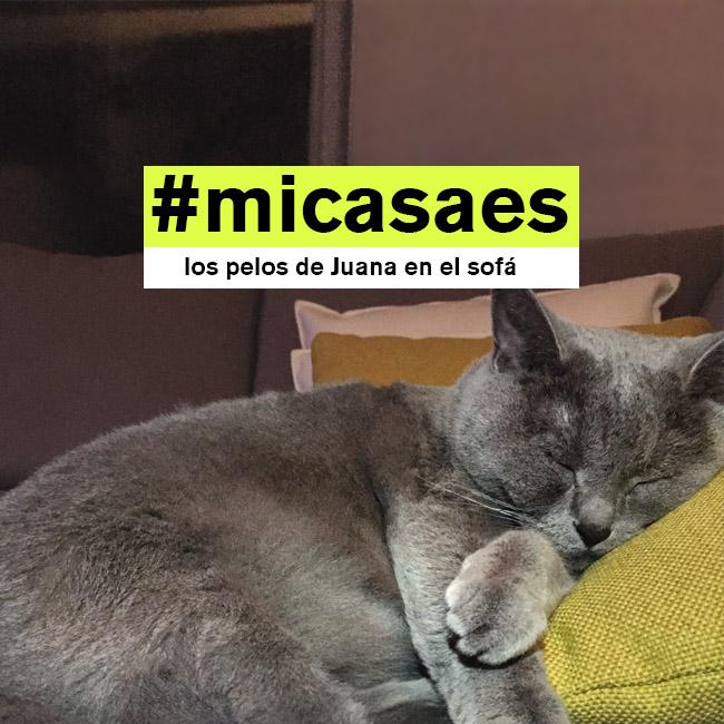 #micasaes el hashtag de la campaña de idealista