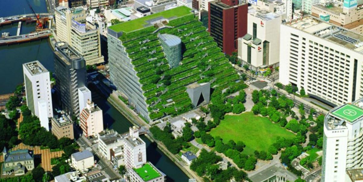 Un jardín en el tejado