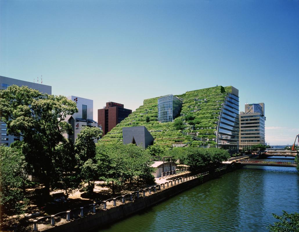 Jardín vertical urbano