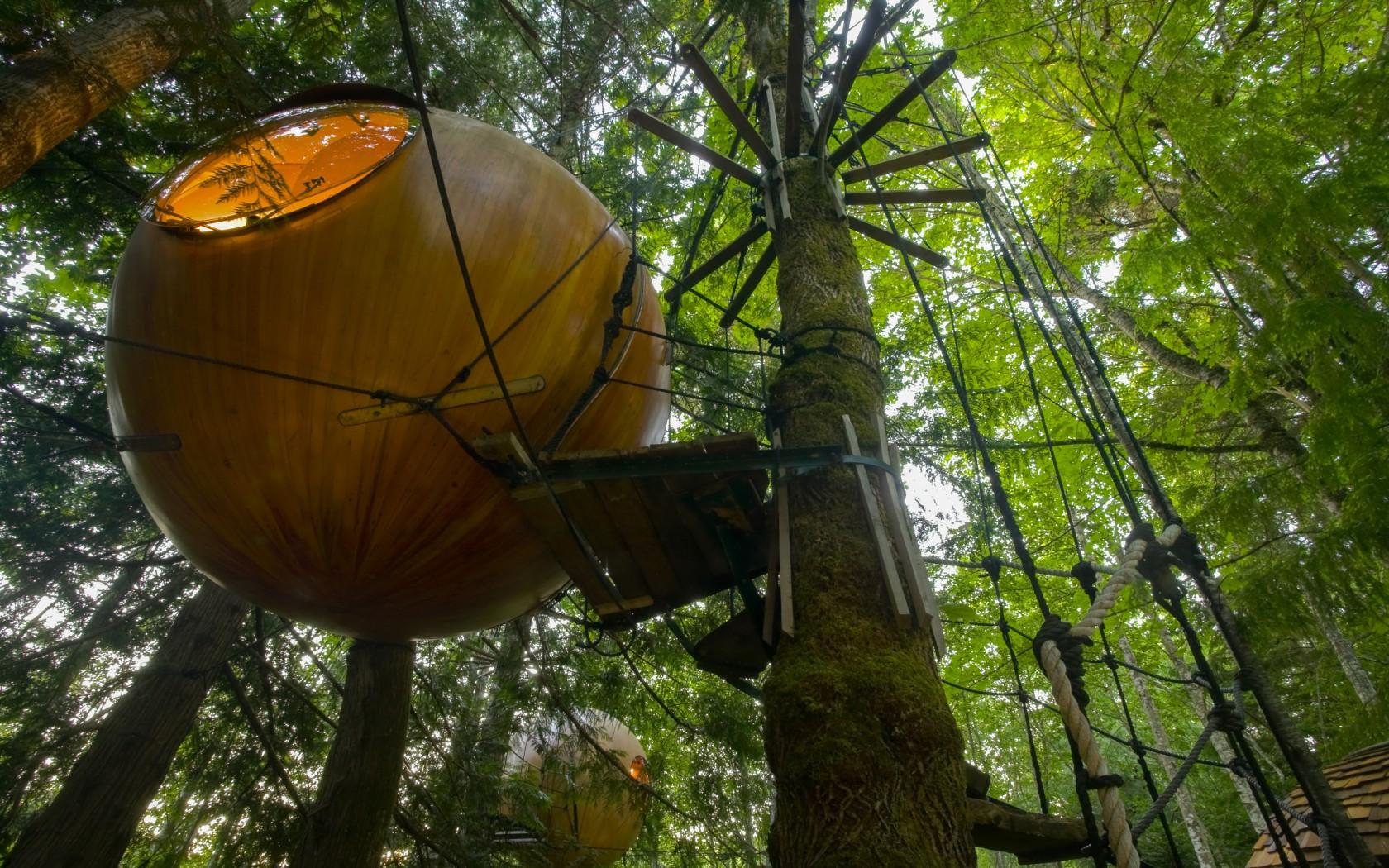El hotel para dormir sobre un árbol como los Ewoks