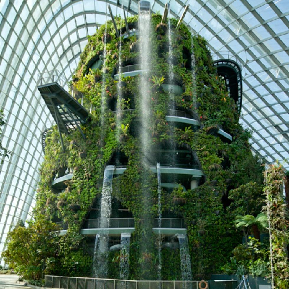 jardin vertical casero c mo hacer un jard n el blog de los mejores consejos y jardineria alicante 4 Los jardines de la bahía (Singapur)