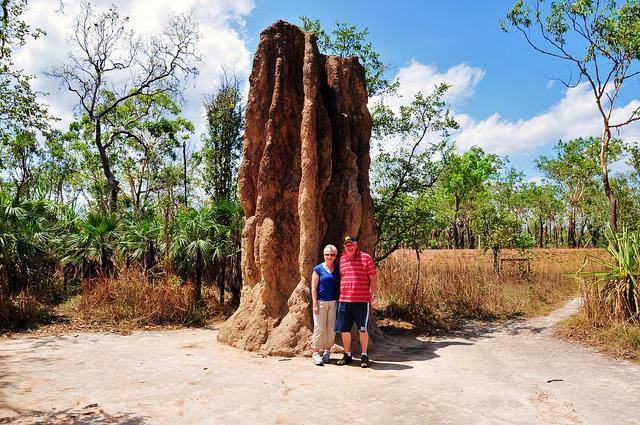 Un termitero gigante