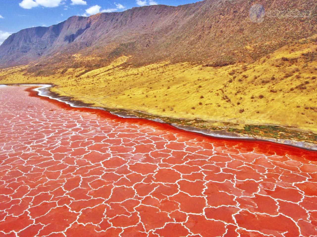 El lago Natron en Tanzania