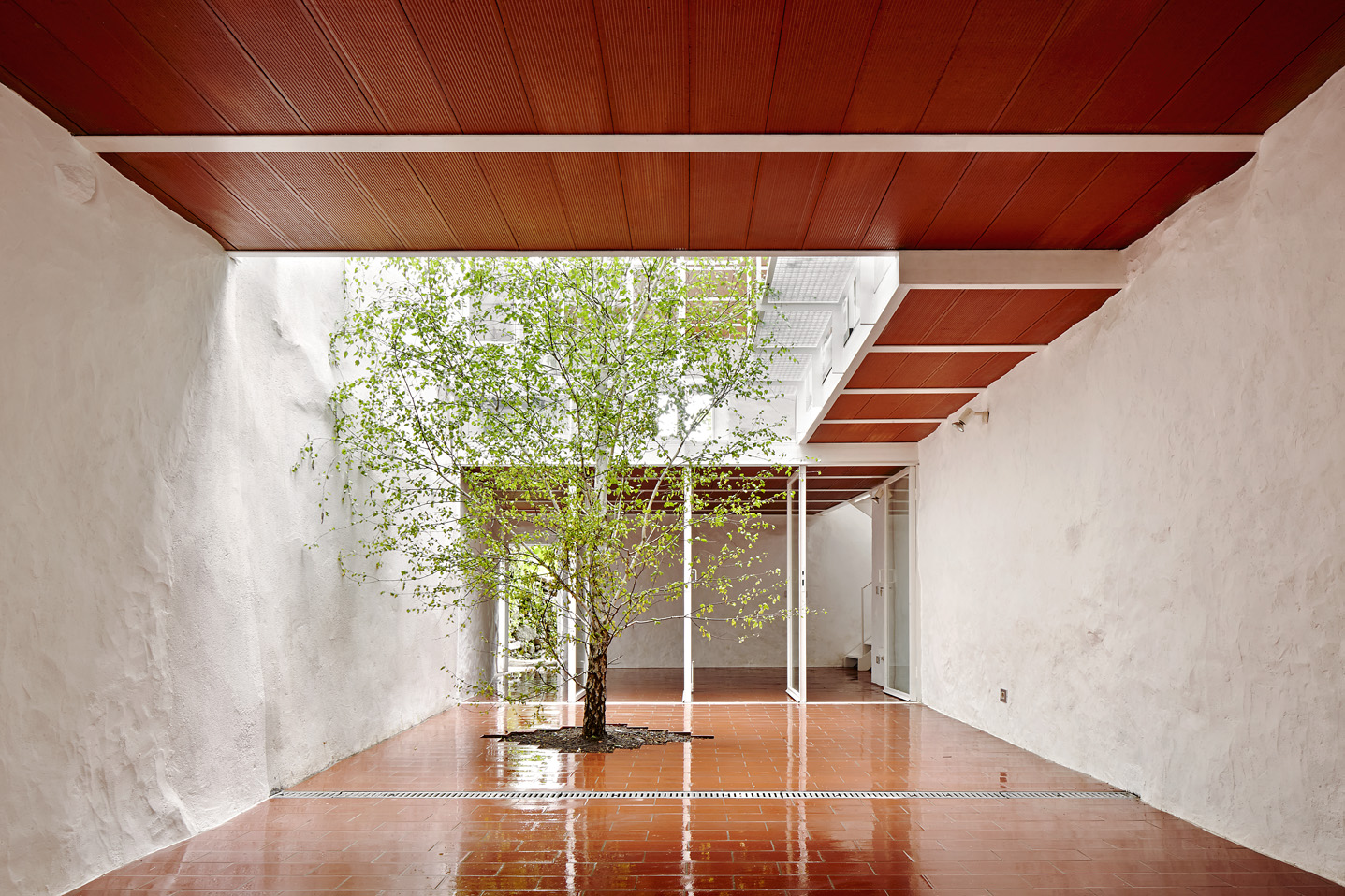 Casa Luz. ARQUITECTURA-G