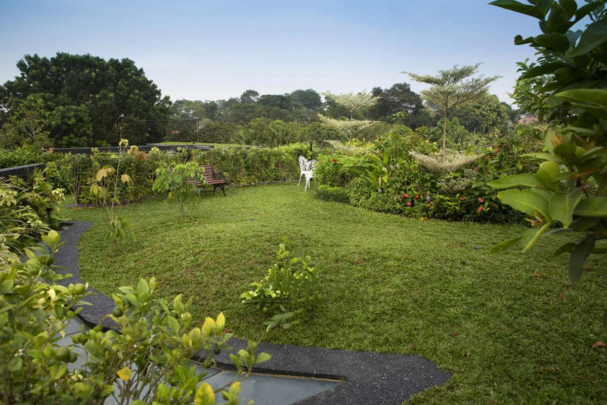 Casas de ensueño: un increíble paraíso tropical escondido en medio de la ciudad