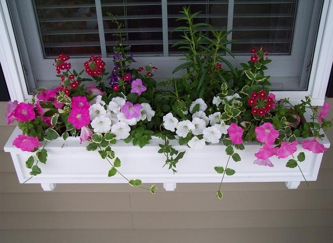 Ideas de decoraci n c mo una jardinera bien cuidada puede for Como decorar una jardinera