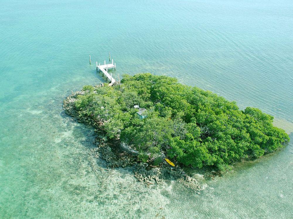 Dolphin Jump Key. Rent My Island