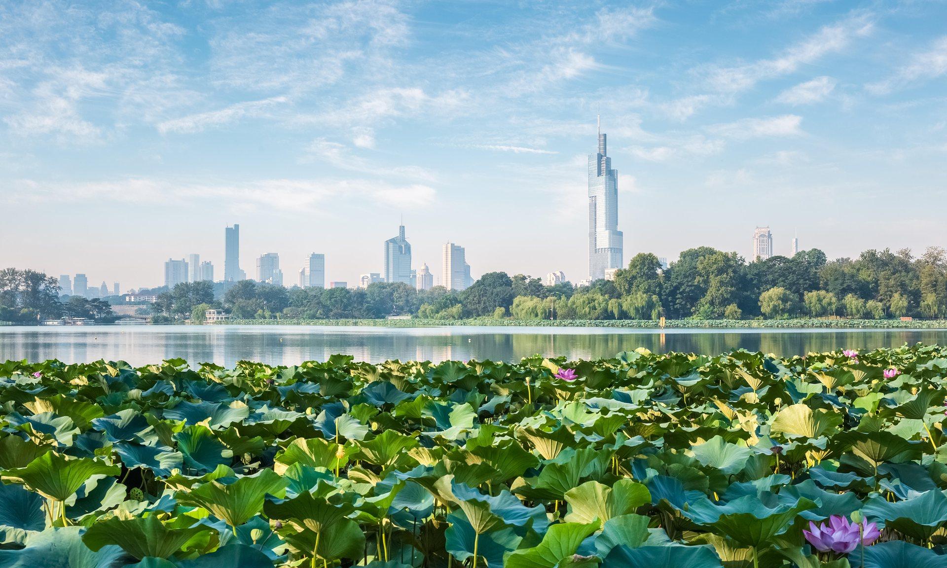 Nanjing (China)