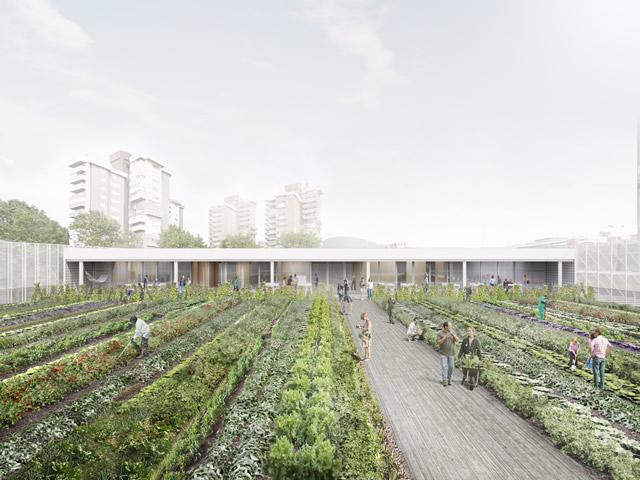 Recreación del futuro huerto del mercado de la Vall d'Hebron. Fuente: Ajuntament de Barcelona / Creative commons