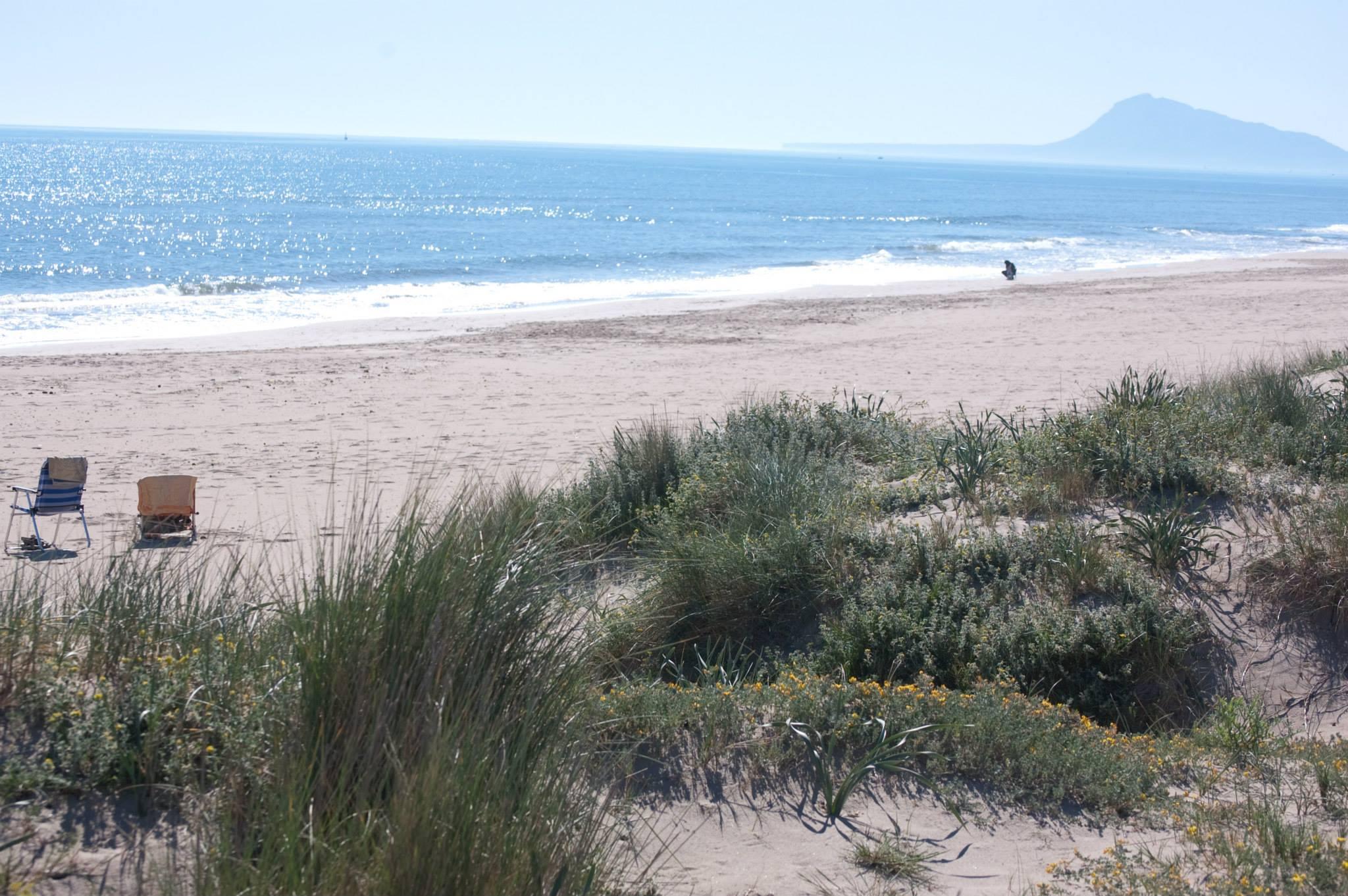 Playa Daimús en Valencia