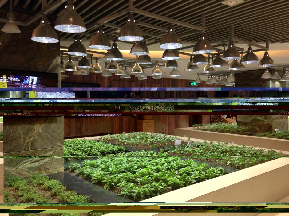 Un centro comercial muy sostenible