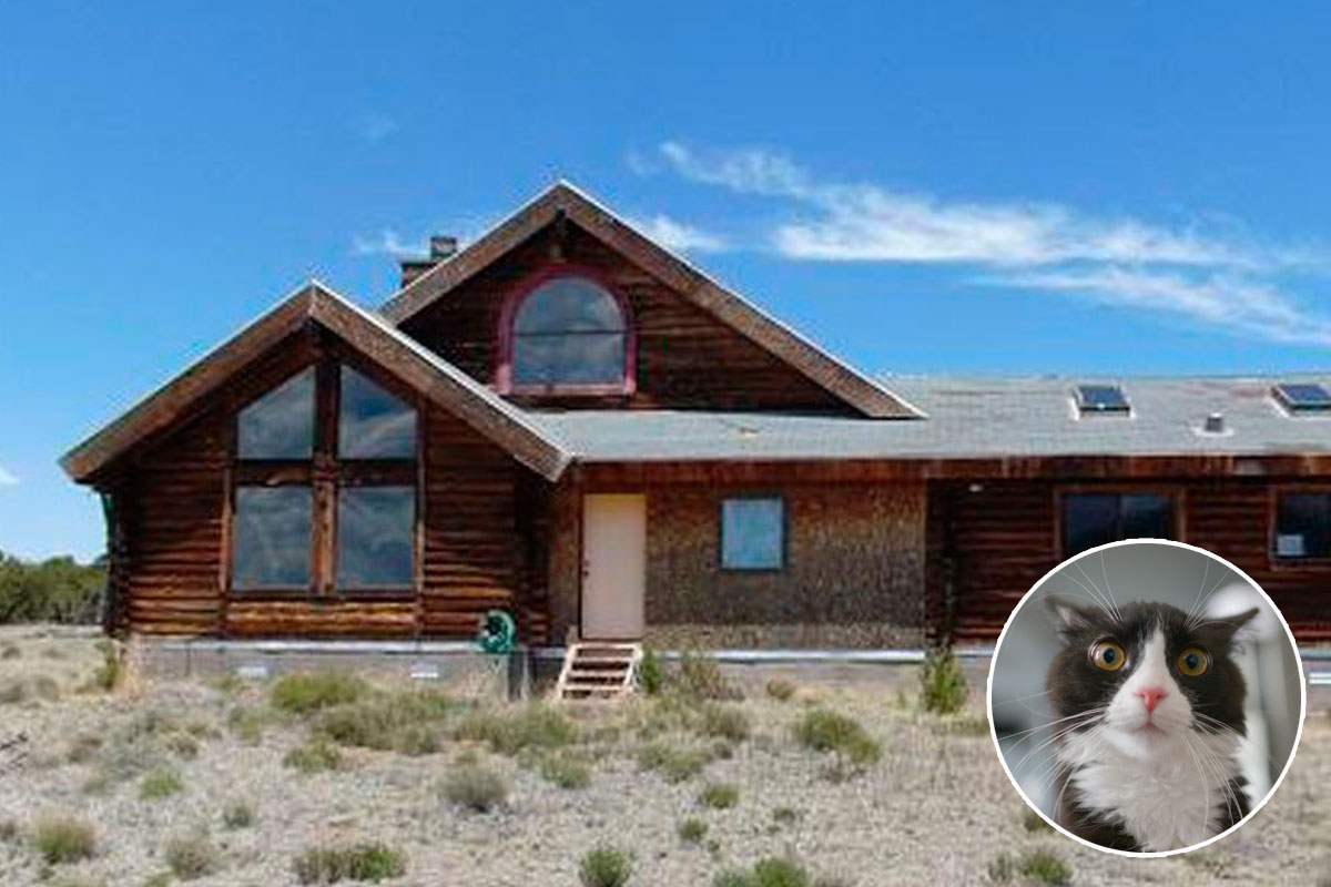Century 21 High Country