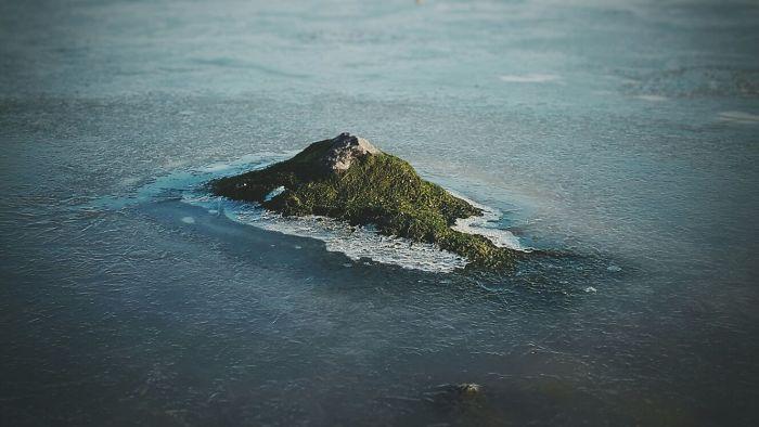 Vista aérea de una isla desierta del Pacífico... en un trozo de musgo de la calle