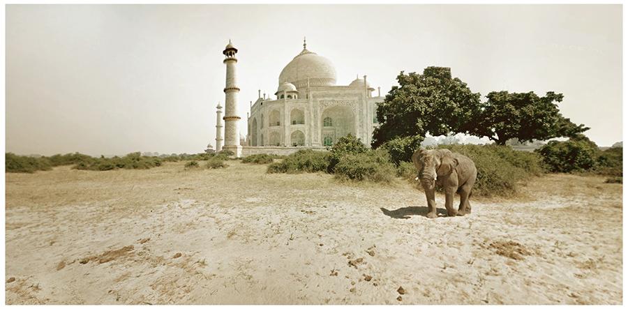 cinemascapes: my street view edition - Taj Ma'frica