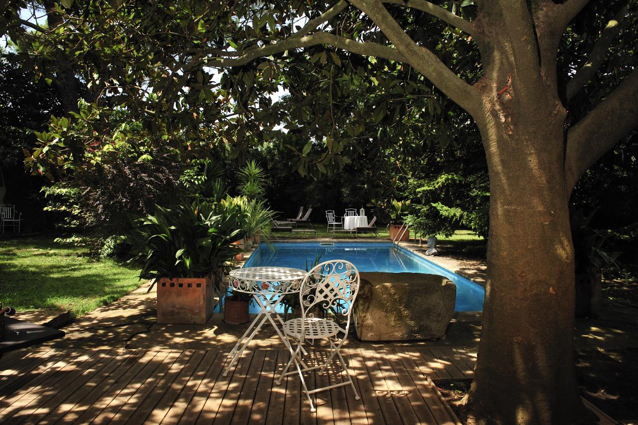 El pequeño 'bosque' de la casa confiere un área de reposo y naturaleza