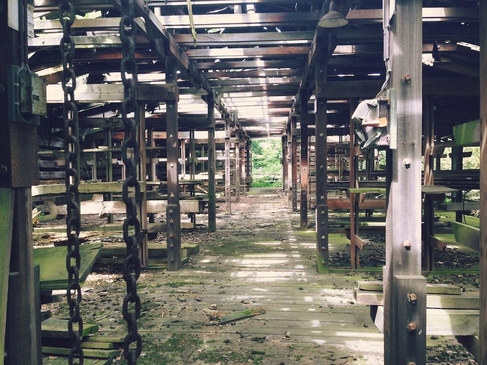 Ruinas de la exposición