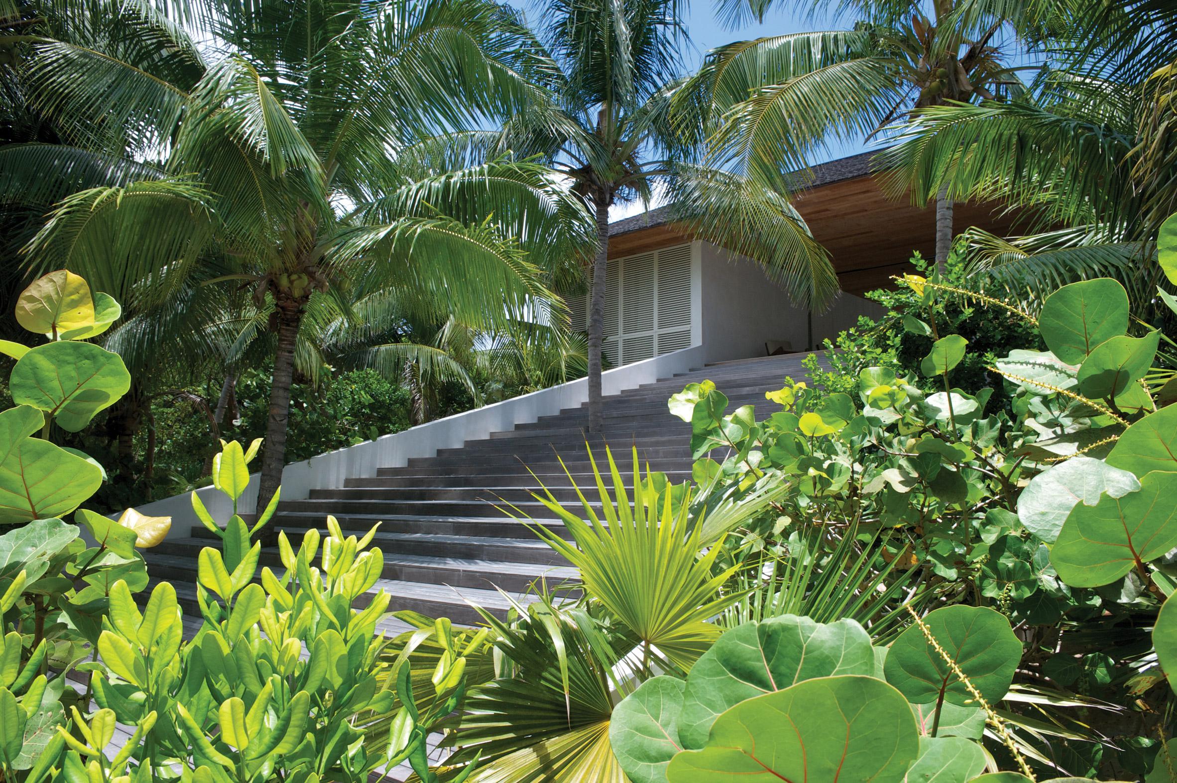 El verde tropical rodea esta vivienda de una planta