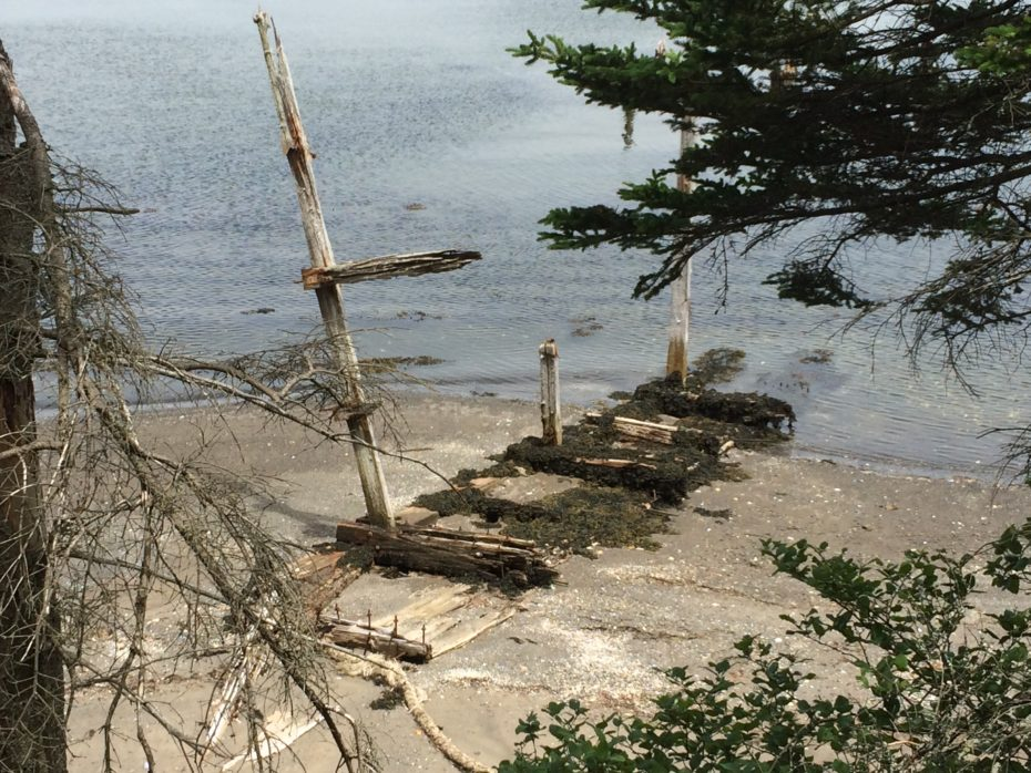 FRIENDS OF MCNABS ISLAND SOCIETY