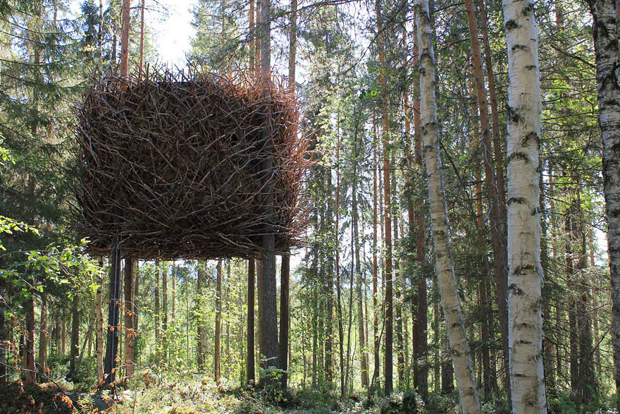The Bird's Nest Tree House