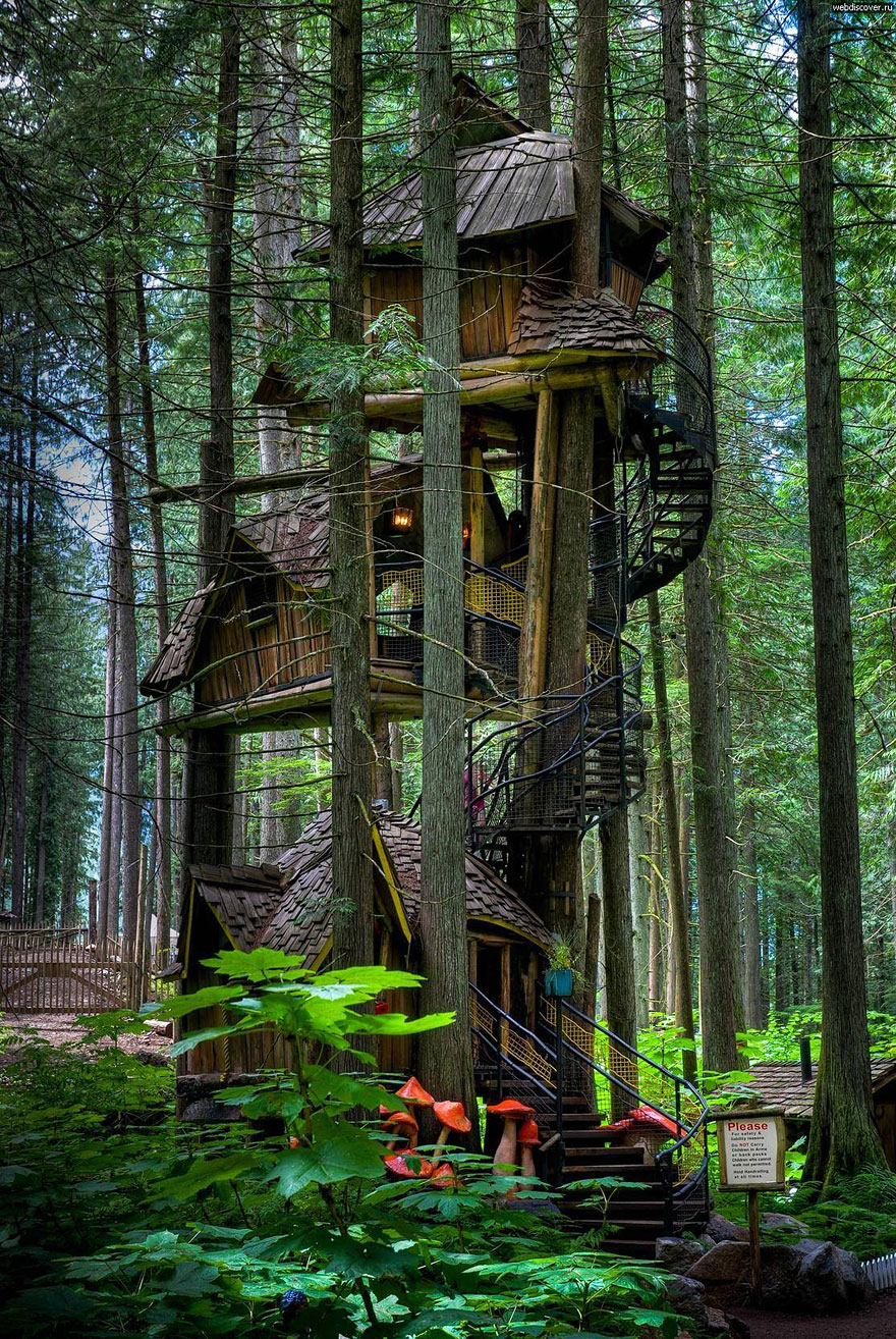 Three Story Treehouse