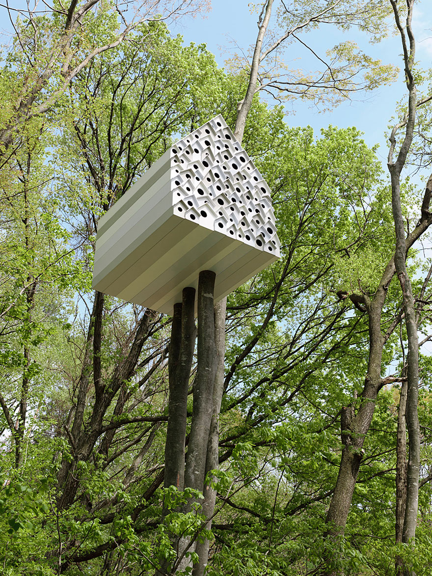 Treehouse for Birds and People