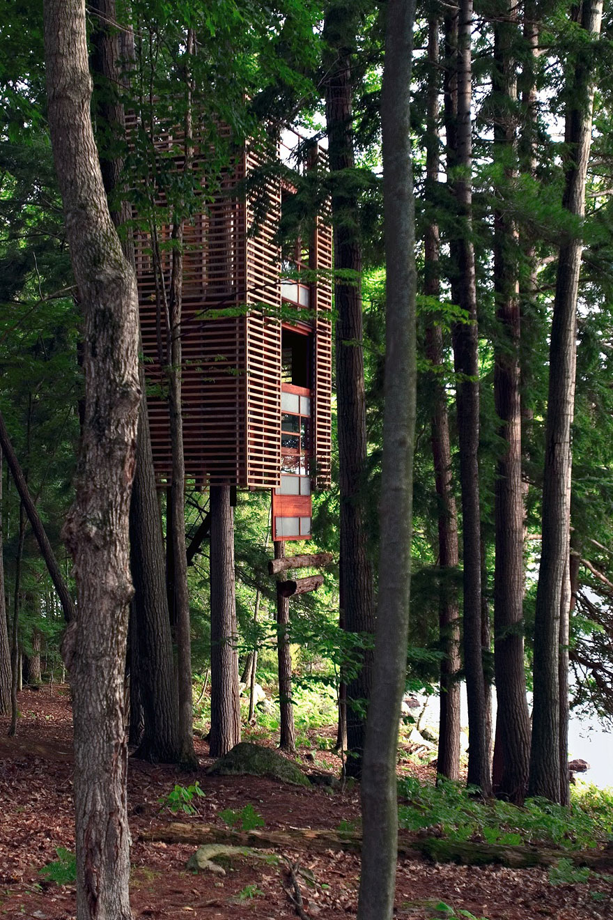 Treehouse in Muskoka