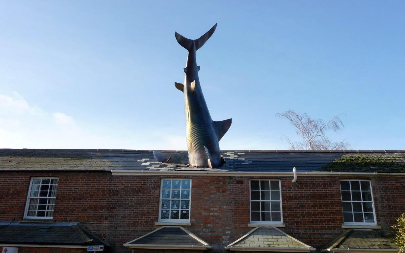 El tiburón de Headington