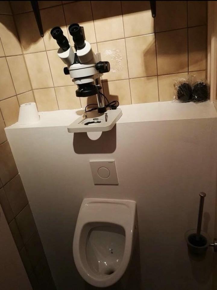 Por si alguien necesita ayuda / Toilets With Threatening Auras
