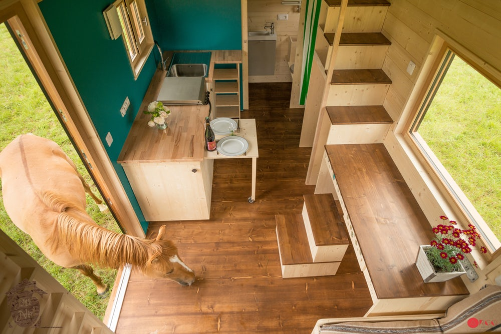 Interior visto desde arriba / Agence Argo via New Atlas