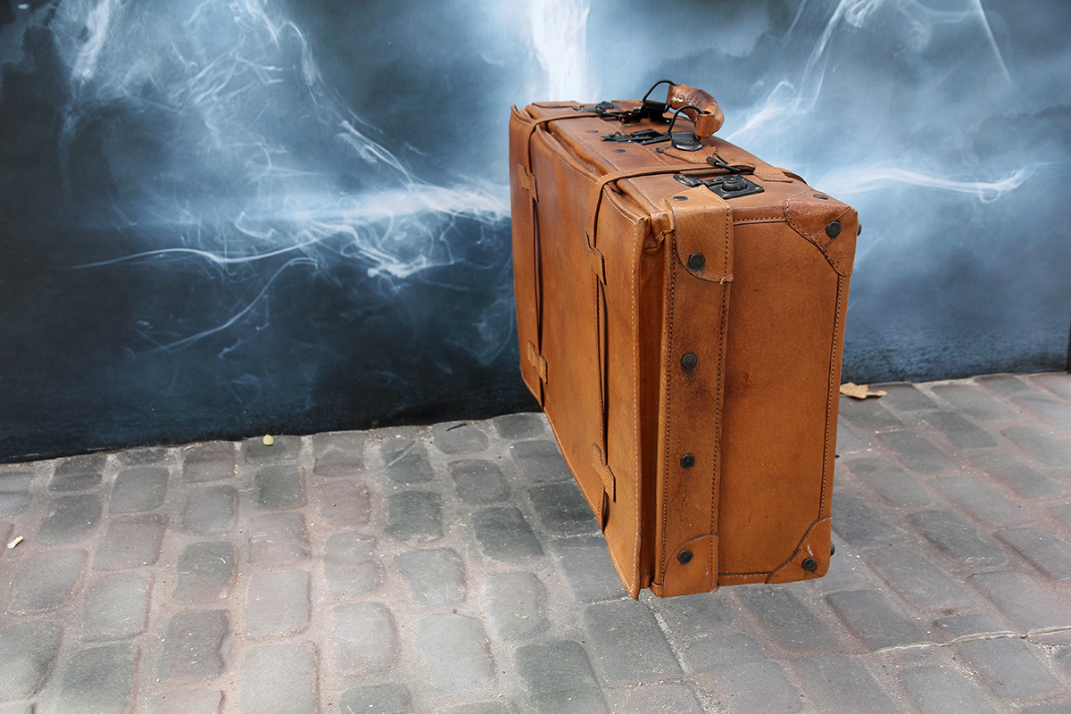 La maleta de Newt Scamander repleta de animales mágicos en el Museo Nacional de Ciencias Naturales