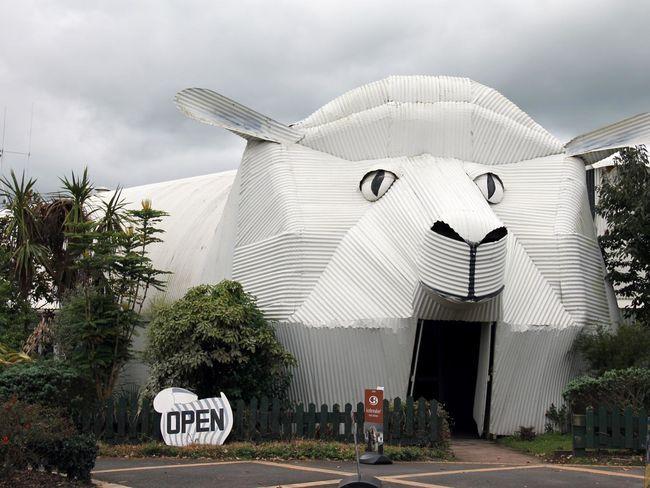 La oveja es un símbolo del país