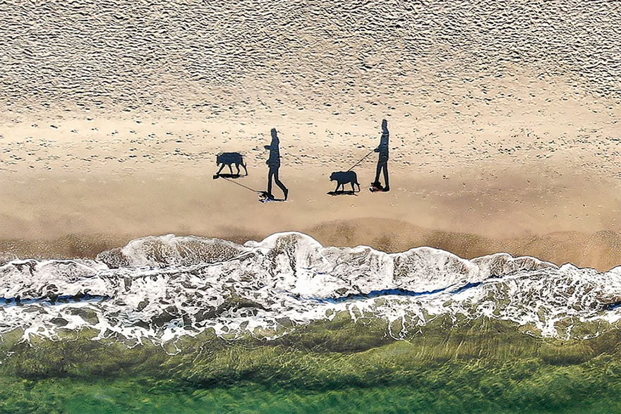 Dos perros, dos personas y cuatro sombras / Qliebin