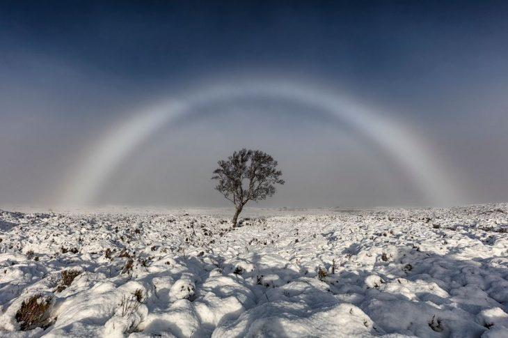 Arcoíris blanco